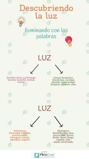 Infografía Andrea C.